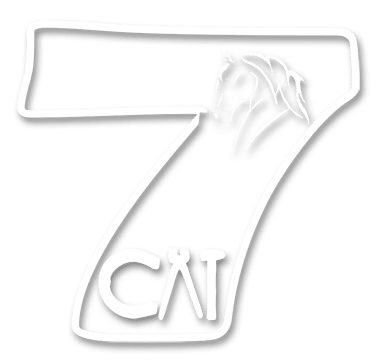 7 Cai – Echitatie