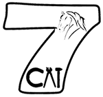 7 Cai – Echitatie, Namaesti